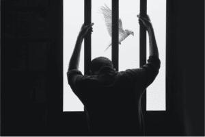 Julio Licinio prison reform
